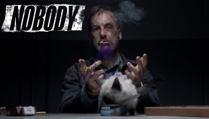 Nobody Full Movie Download In Hindi Filmyzilla