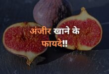 अंजीर खाने के फायदे | Anjeer Khane Ke Fayde