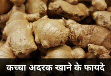 कच्चा अदरक खाने के फायदे | Kaccha Adrak Khane Ke Fayde