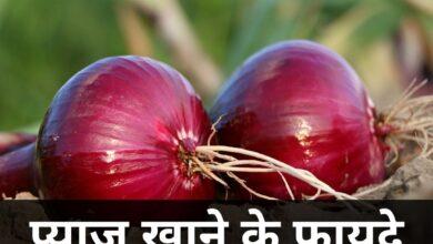प्याज खाने के फायदे | Pyaj Khane Ke Fayde